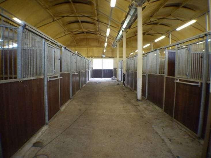 Aughrim equestrian centre for sale