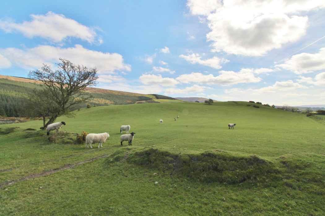 residential farm for sale JP & M Doyle