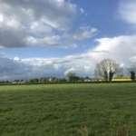 55 Acre Arable / Tillage farm Public Auction