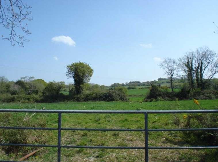 Shanaway East, Tarbert, Co. Kerry For Sale Dillon Prendiville