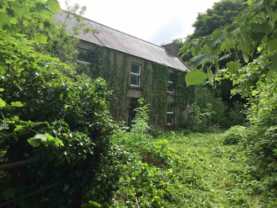 Farm For Sale Co. Roscommon JP Gill Auctioneer