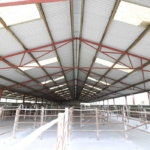 Steel Frame Farm Agricultural Shed For Sale Shee & Hawe