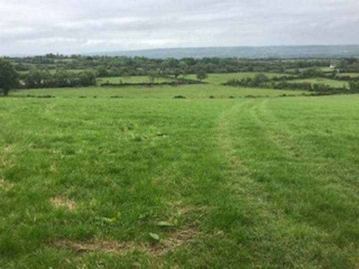 On The Market From Pat Gannon Auctioneers: 24.48 Ac. / 9.91 Ha. Of Prime Farmlands