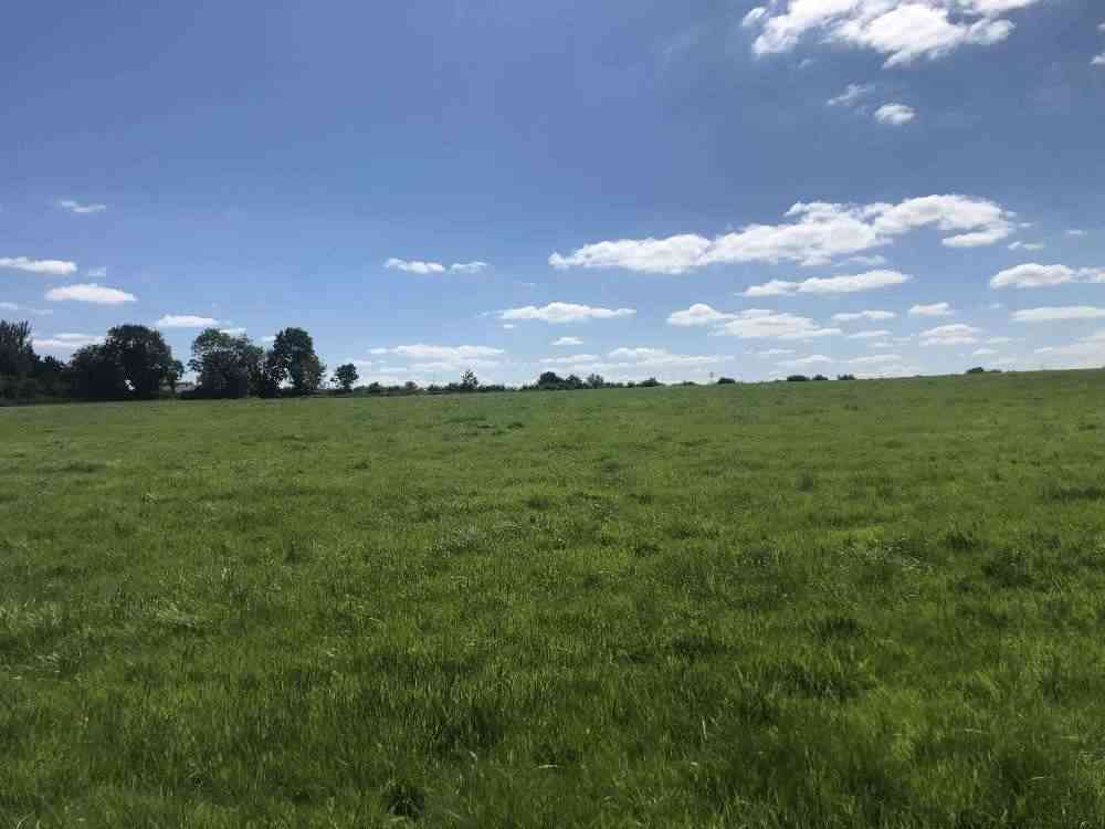 128 Acre Arable / Tillage Farm Co. Tipperary Stokes & Quirke