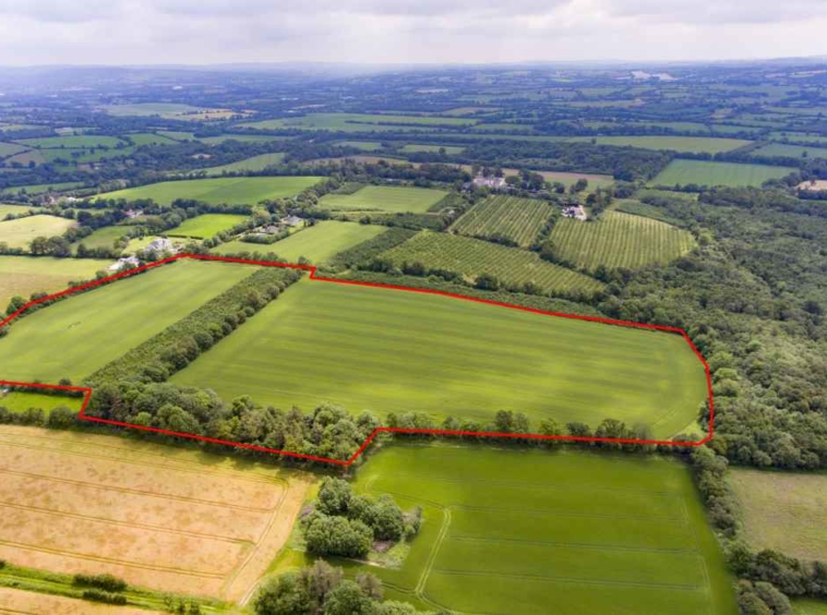 30.7 Acres Prime Arable / Tillage Farm Land Co. Cork Liam mullins & Associates