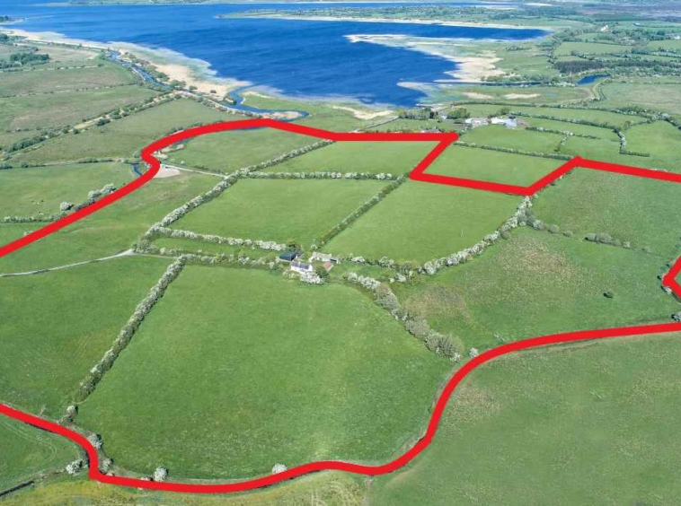 Crosbie & Graham Resdiential Farm For Sale The Pigeons Co. Longford
