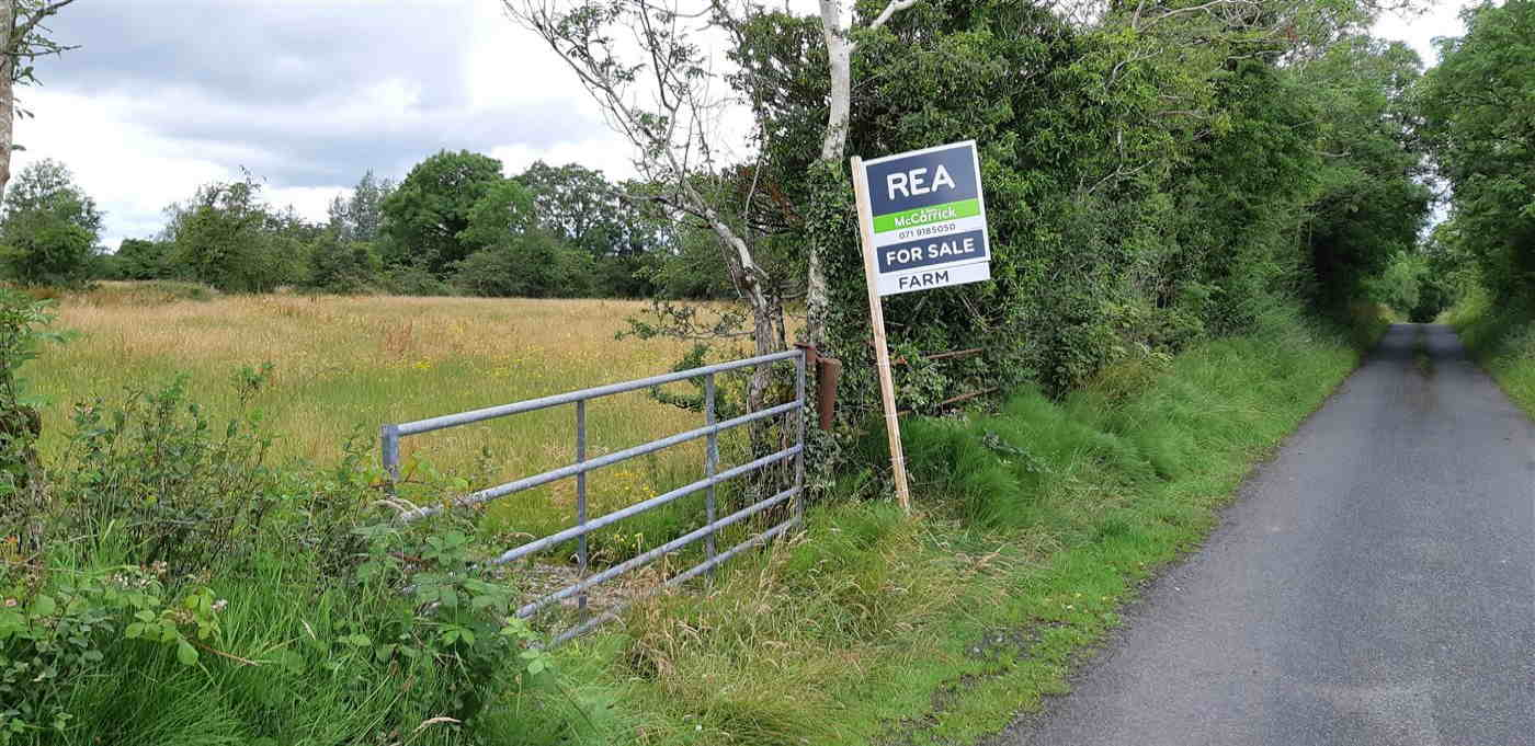 37 acre Non Residential Farm (Available in lots) REA McCarrick & Sons