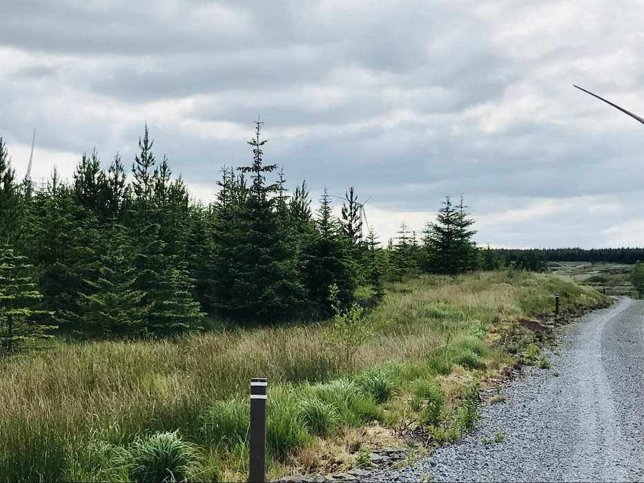Booltiagh Windfarm & Booltiagh Forestry, For Sale David Costelloe Estate Agents