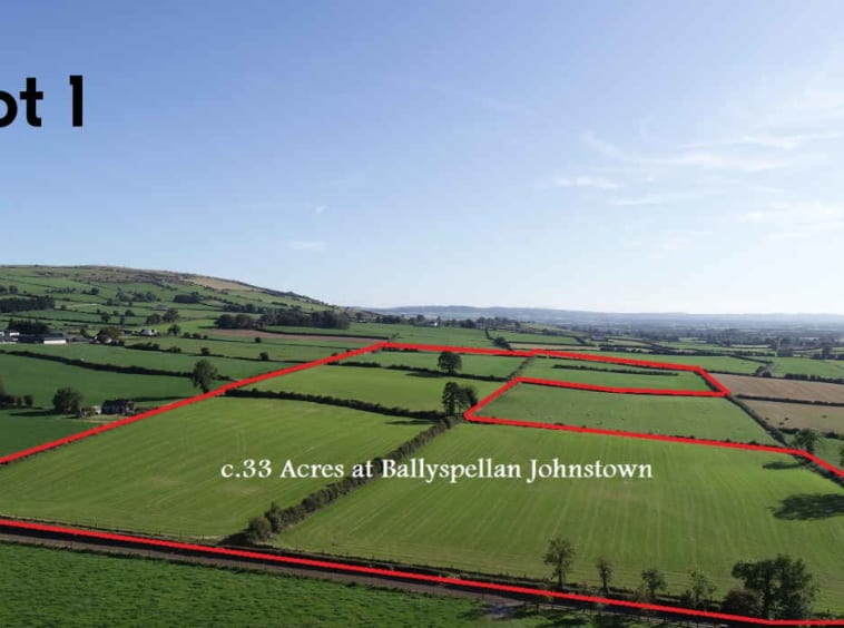 On The Market From Gannon Auctioneers Ltd: Superb 33.5 Acre Residential Farm Holding (Available in Lots)