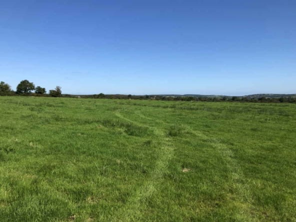 Public Auction by P. F. Quirke & Co. Ltd: 58 acre Residential Farm Holding With Extensive Road Frontage