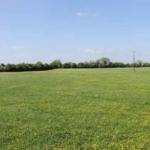 Public Auction By P.J. Broderick Auctioneers: 2 Seperate Lots (16.5 Acres & 32 Acres) Agricultural Farm Land (Unless Previously Sold)