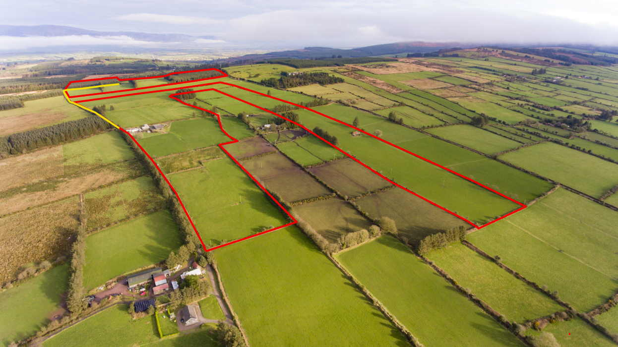 On The Market From Paul O'Driscoll Auctioneer: 79 Acre Resiential Farm Holding With Extensive Range Of Outbuildings
