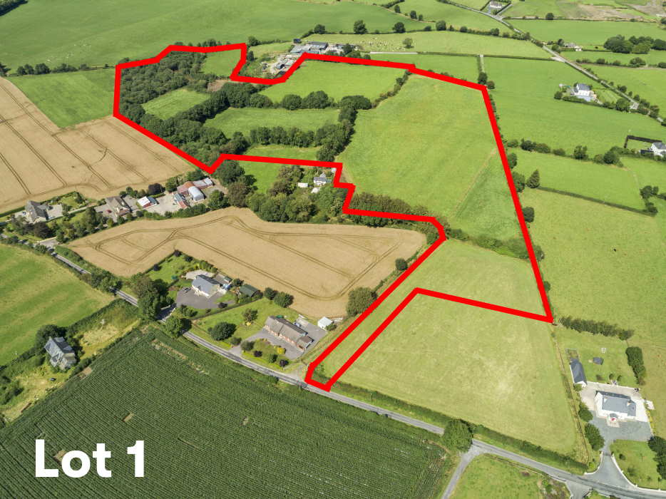 For Sale by Public Auction by REA Dawson (Tullow): Residential Farm Holding Friday 27th March at 3pm in our office at Barrack Street, Tullow (UPS)