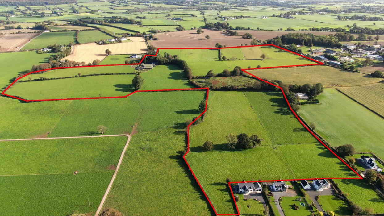 On the Market From Brian Gleeson Property Ltd: Top Class 57 Acre Farm Holding With Outbuildings (Available in Lots)