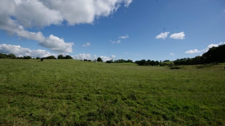 On The Market From Martin Shortt Auctioneers: Extensive 80 Acre Roadside Farm With Dairy Enterprise Potential