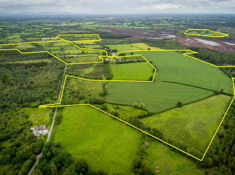 Public Auction by Dougan Fitzgerald: 184 Acre Farm Holding (Available in Lots) Agricultural Property Location: Derrynaflan, Lurgoe, Killenaule, Co. Tipperary