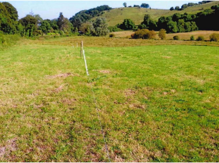 On The Market From Moore Bros.: 55 Acre Roadside Holding With Outbuildings & Forestry Potential