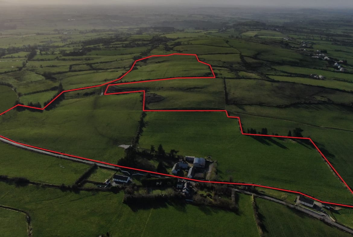 On The Market From Matthew Ryan & Son: Roadside Residential Holding containing c. 55 St Acres ( In One or Two Lots)