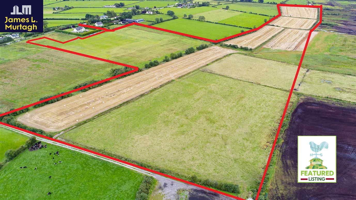 On The Market From James L. Murtagh Auctioneers: 41.5 acre non-residential farm (available in lots)