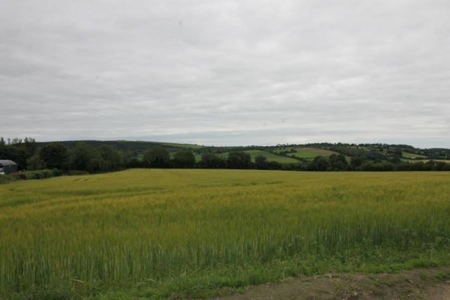 On The Market From P.J. Broderick & Co. : Top Class 38 Acre Residential Arable Farm Holding With Extensive Road Frontage (includes 14 Ac. Of Forestry)