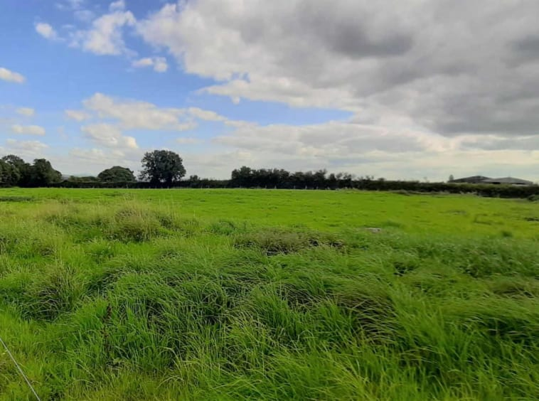 On The Market From P.J. Broderick: 44 Ac. Farm Holding With Extensive Road Frontage (Available in Lots)