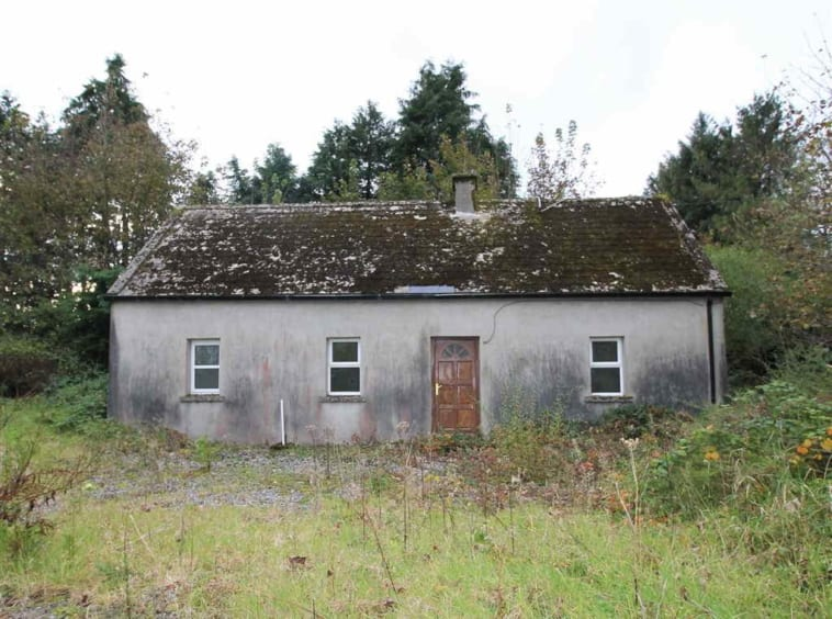 On The Market From P.J. Broderick: 32 acre Farm With Old Dwelling Thereon. Potential Restoration Project Agricultural Property Location: Knockmaroe and Knockduff, The Milestone, Thurles, Tipperary