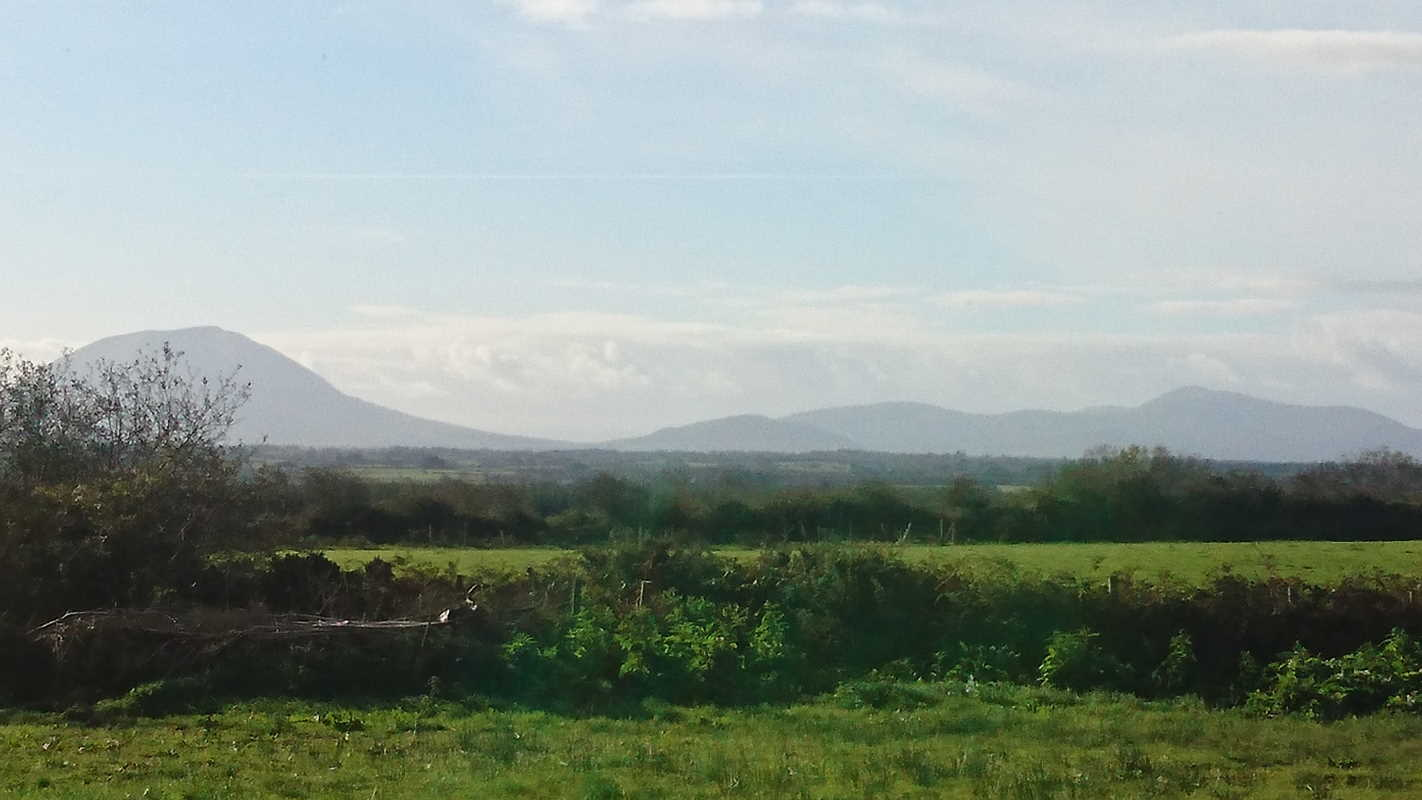 On The Market: Grass Based Organic Untapped Sheep Milk Business Set On 25 Acres & Includes Dairy & Cheese/Yogurt Processing Equipement