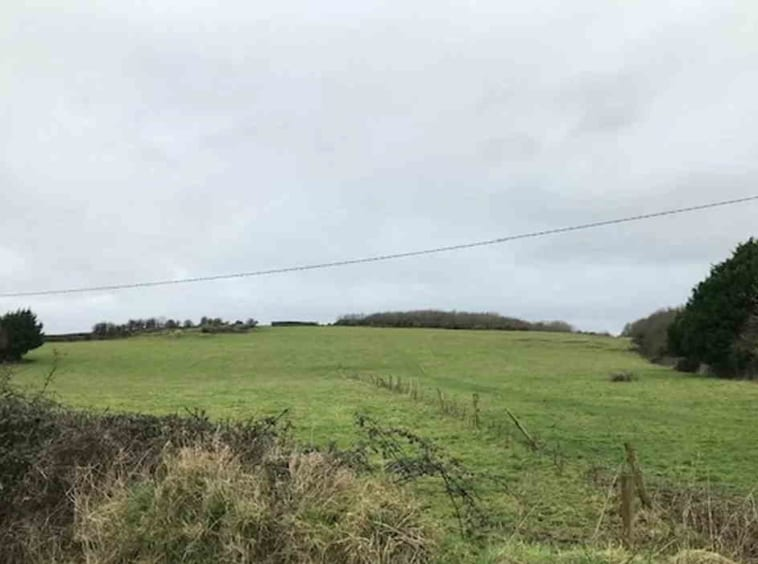 On The Market from John Shaw Auctioneers: Attractive 21 Acre Roadside Residential Holding
