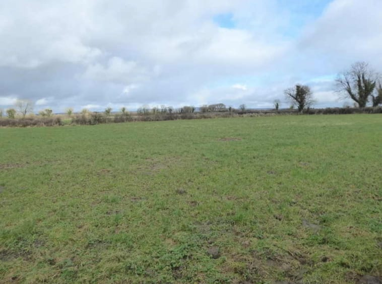 On The Market from Ted Sheehan Auctioneer: 28 Acre Non Residential Farm With Outbuildings
