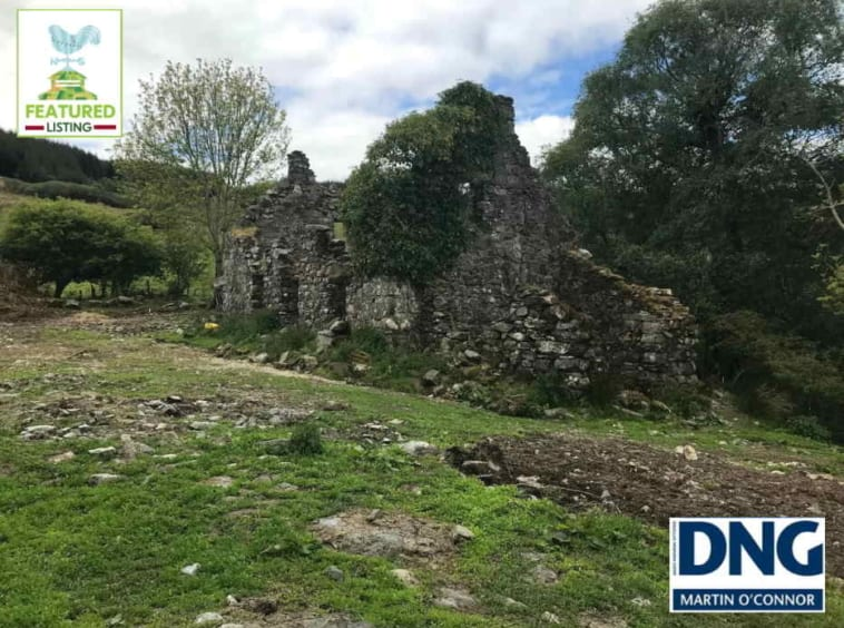 On The Market from DNG Martin O'Connor: 33.23 Acre Small Holding With Derelict Stone Cottage & Full Planning Permission