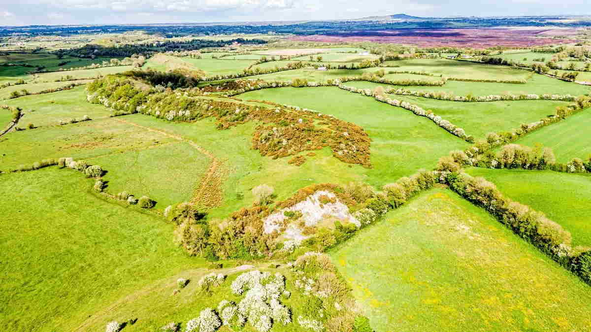 On the Market from GVM Tullamore: 56 Prime Agricultural Land with Huge Deposits of Sand / Gravel