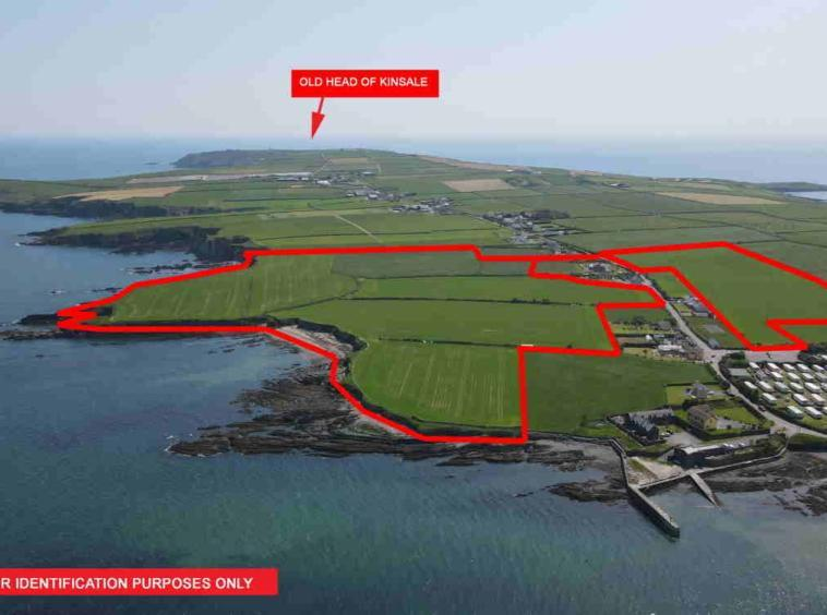 On the Market from Hodnett Forde Property Services: Excellent Quality c.45.27 Acre Roadside Non Residential Farm Holding (1 or 2 Lots) with Private Beach