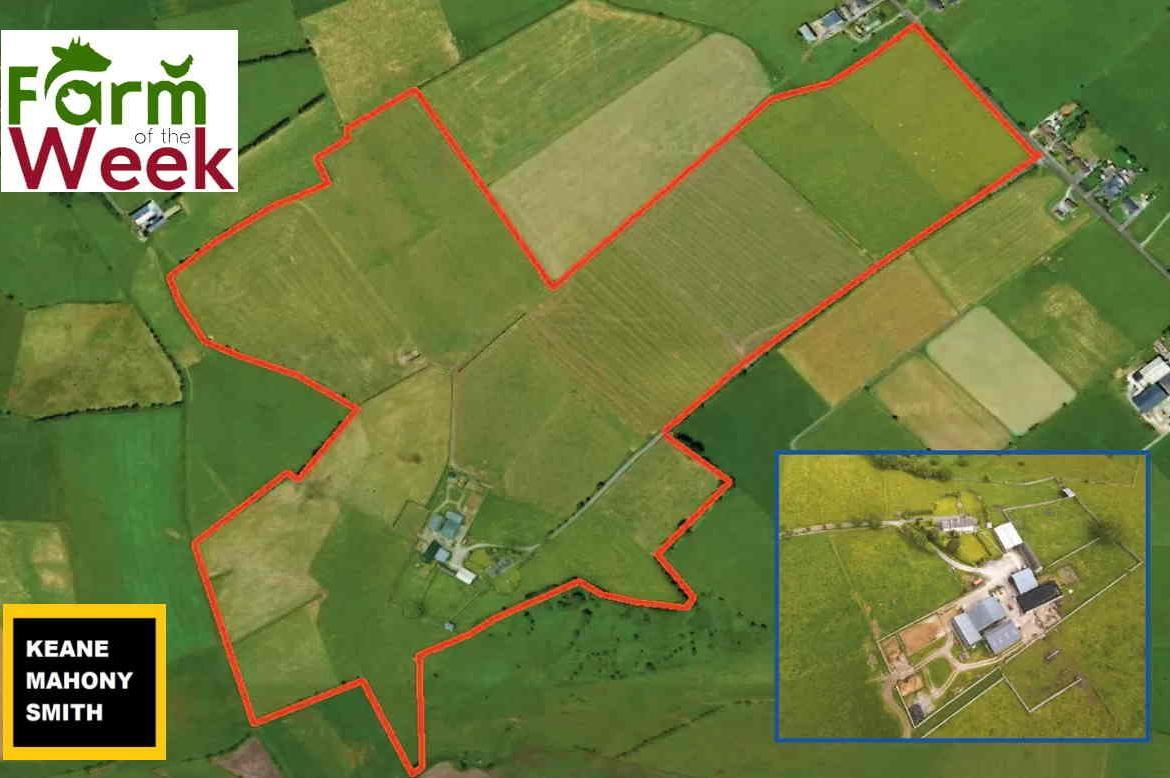 NEW to the Market from Keane Mahony Smyth Galway: Superb Residential Farm Together with Substantial Outbuildings on c. 92 acres of Prime Quality Land