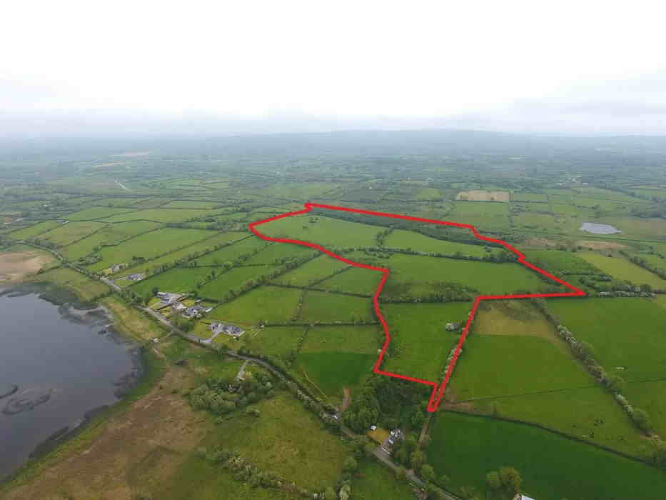 NEW to the Market form Property Partners Earley: Prime Farm of Lands & Forestry with the benefits of Entitlemnts Passing